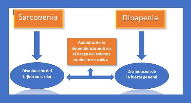 Sarco-Dinapenia