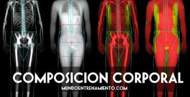 Composición corporal y salud