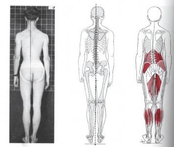 Fotografía de planos de importancia para el análisis de la postura estática.