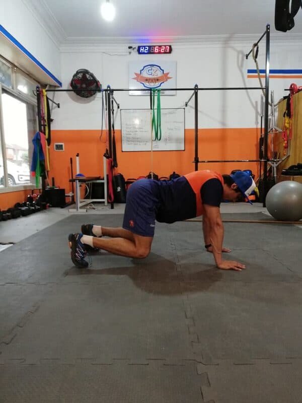 Caminata de oso, ejercicio de estabilización central anti-flexión.