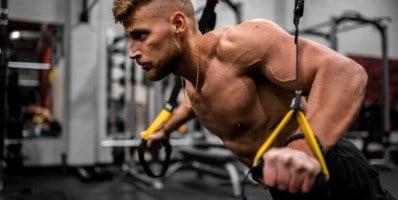 Tipos de músculos y su función