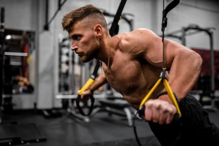 Tipos de músculos del cuerpo humano y su función