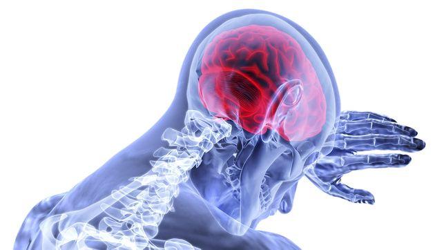 neurociencia deporte