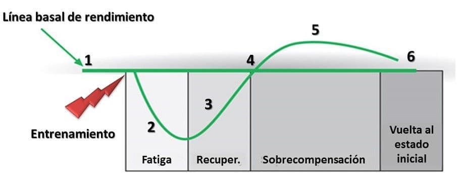 Figura 1. Principio de supercompensación