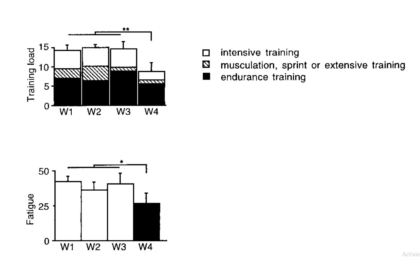 Figura 6. Carga de entrenamiento