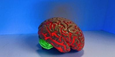 tareas cognitivas y ejercicio