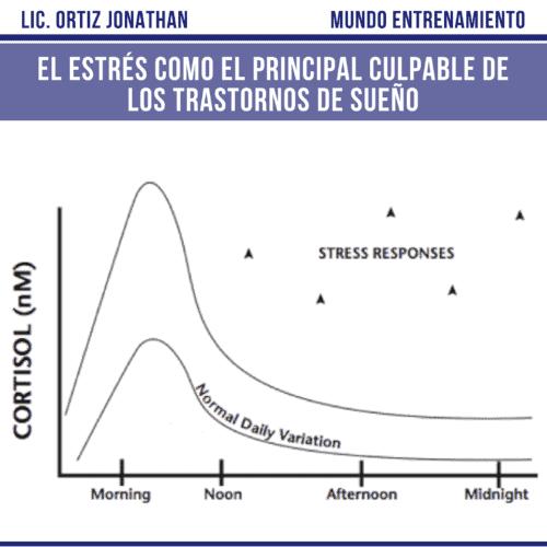 Cortisol, hormona del estrés.