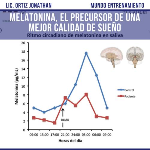 La importancia del ritmo circadiano en la liberación de melatonina.