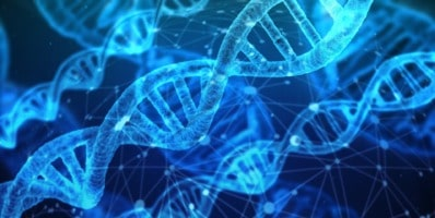 genes y actividad física