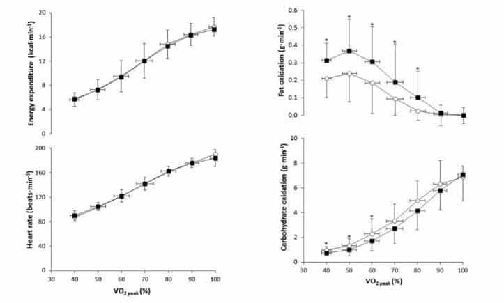 Efectos de la psinefrina en energía y sustratos