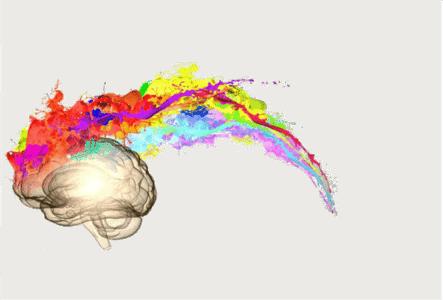 cerebro coaching
