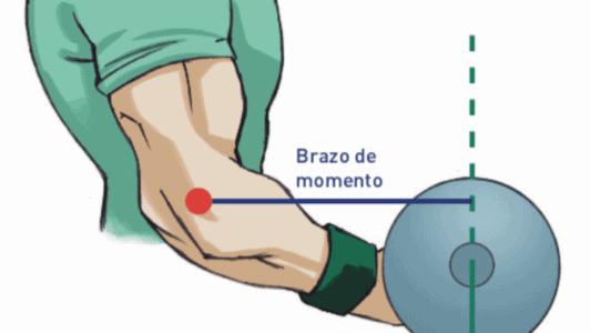 Alejar o aumentar la palanca de resistencia aumentara la dificultad de nuestro ejercicio.