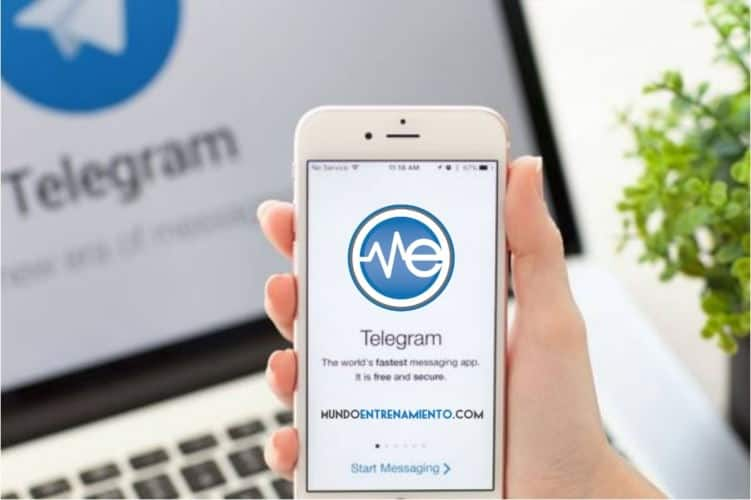 Canales de Telegram de Mundo Entrenamiento