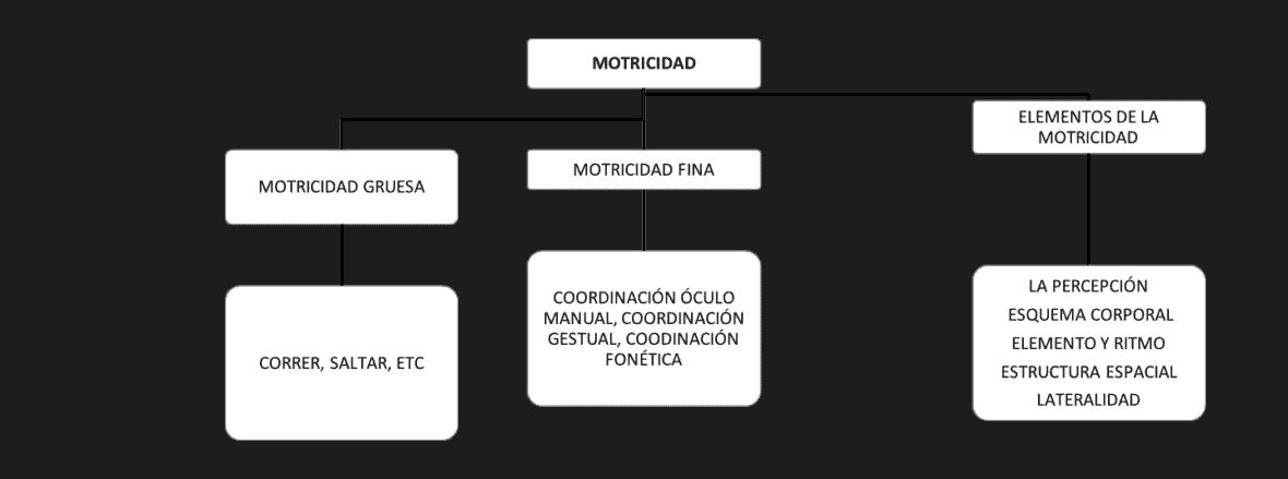 Figura 1. Tipos de motricidad.