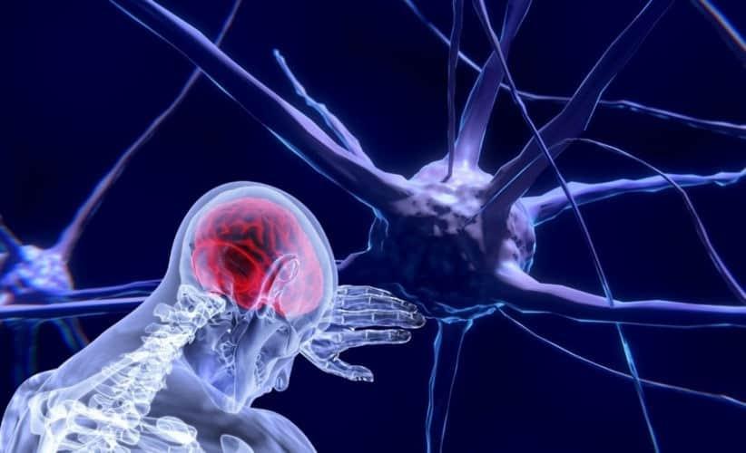 efectos neuronales en sanitarios