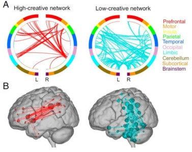 neurocreatividad y deporte