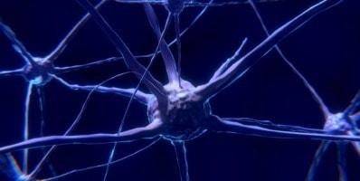neuronas espejo y fútbol