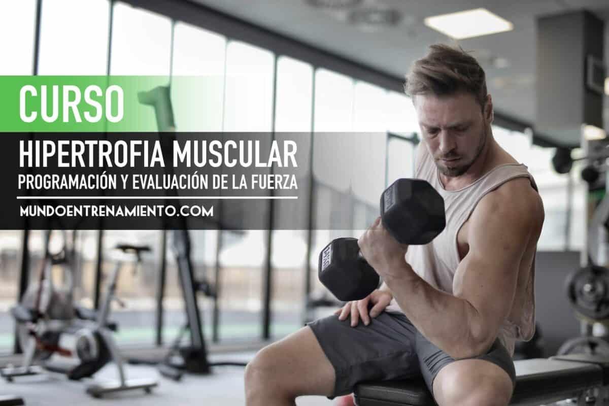 curso hipertrofia muscular