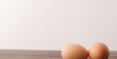 Proteína de huevo y nutrientes de la yema 2