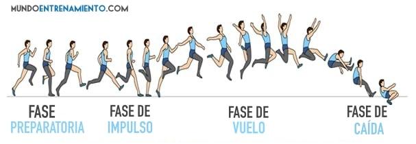 fases del salto horizontal