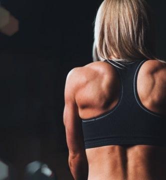 Huesos y músculos de la espalda