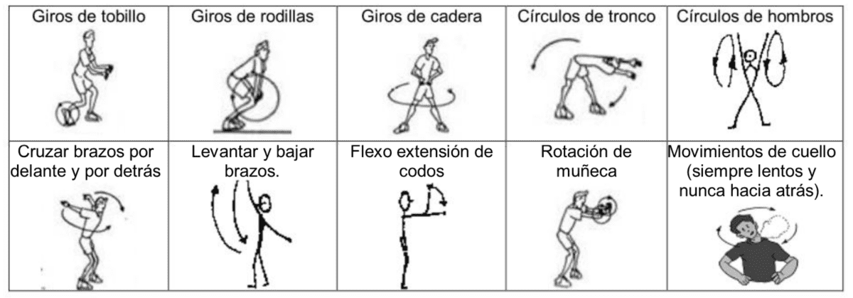 Movilidad articular en Educación Física