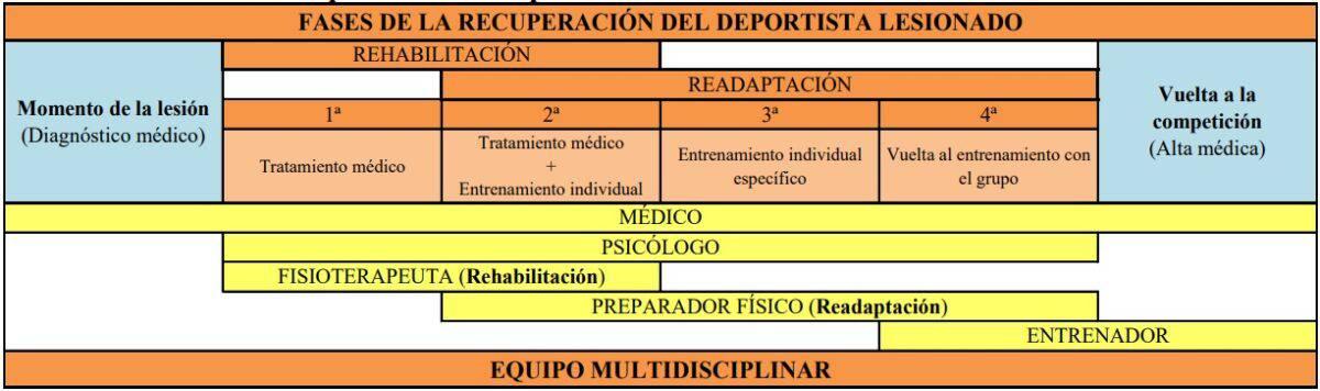 fases del deportista lesionado