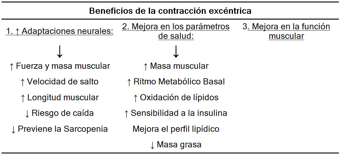 Tabla 1. Beneficios de la contracción excéntrica. Elaboración propia. Extraído de Hody et al. (2019) (7).