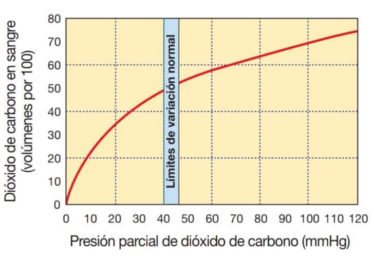 Transporte de dióxido de carbono en la sangre.