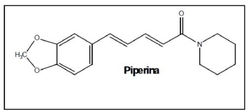 5 beneficios del Extracto Pimienta Negra 1