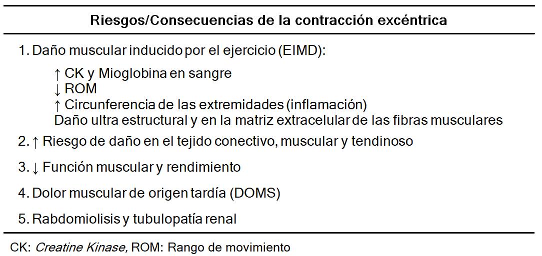 Tabla 2. Riesgos de la contracción excéntrica. Elaboración propia. Extraído de Hody et al. (2019) (7).