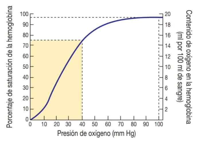 Porcentaje de saturación de hemoglobina en relación con la presión de Oxígeno.