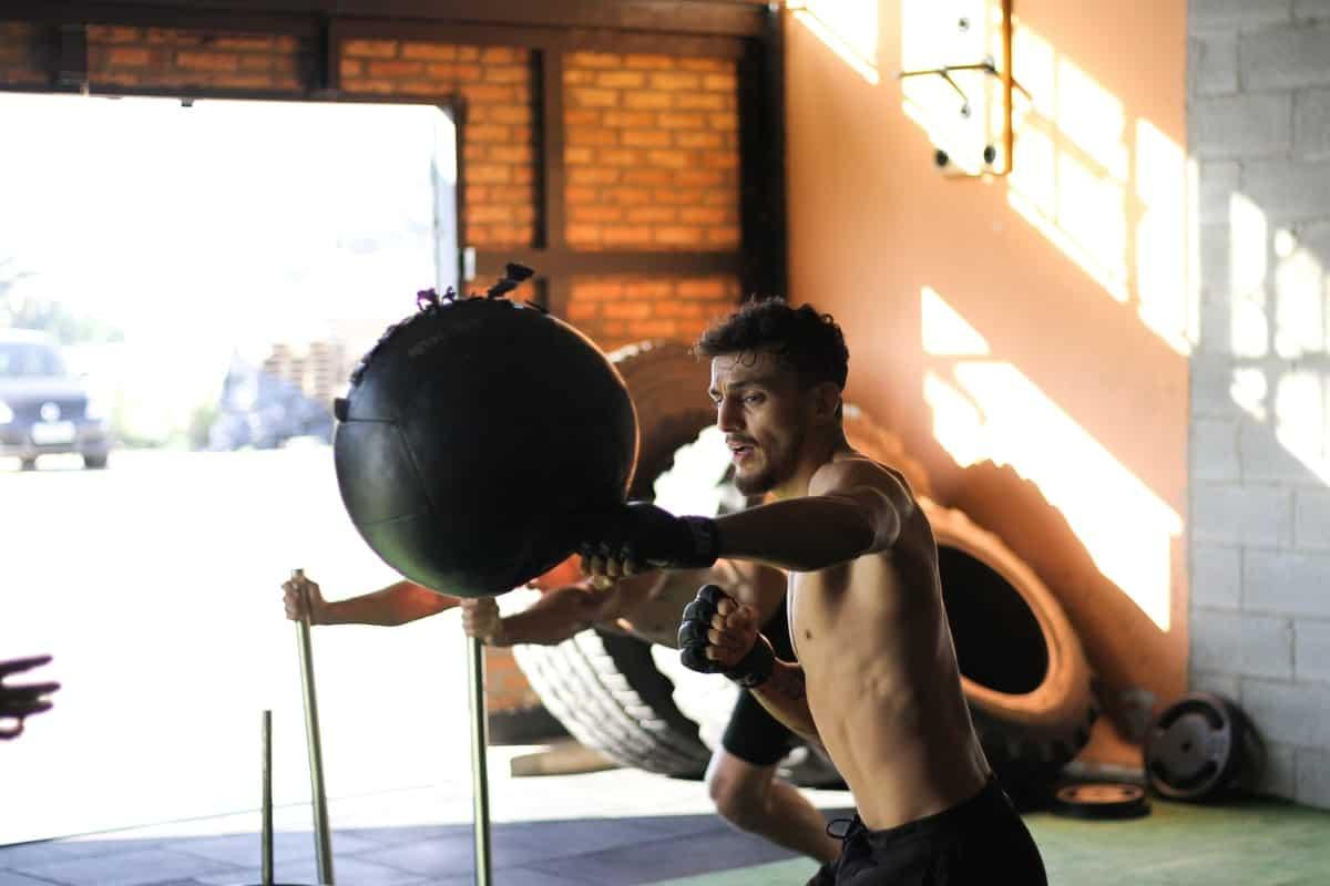 golpeo en deportes de combate