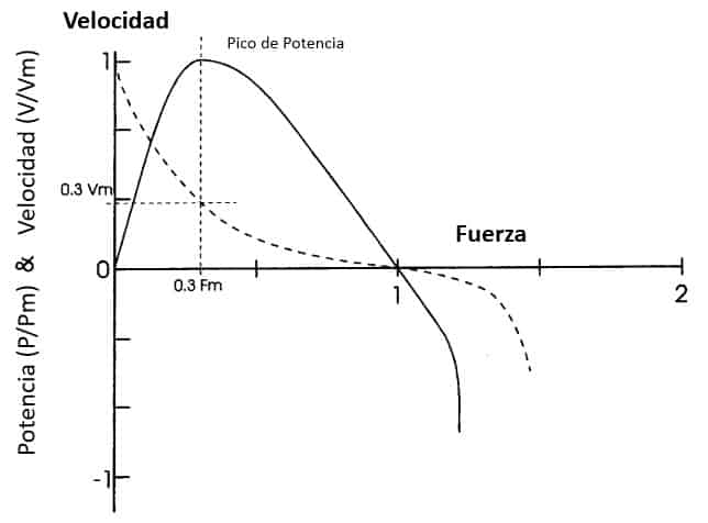 relación Fuerza Velocidad Potencia muscula