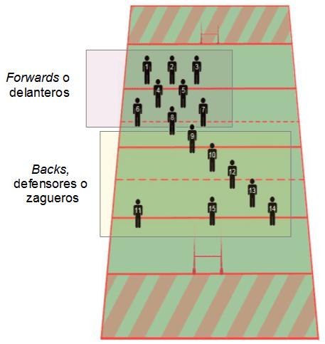 posiciones de rugby