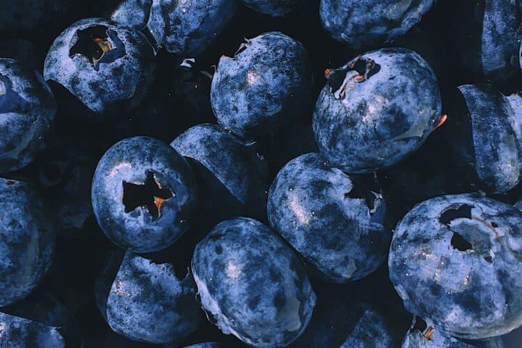 las antocianinas se encuentran en la espirulina azul y en los arándanos