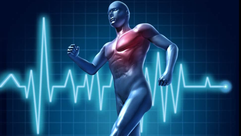 Frecuencia cardiaca, todo lo que necesitas saber | Mundo Entrenamiento