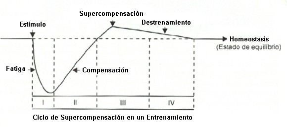 supercompensación