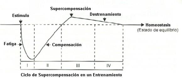 supercompensación